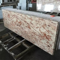 G017 Giallo Oranmental Granite Countertop