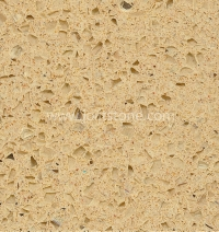 Starfish Beige Quartz